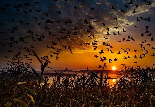 sunset-2973130_640_HP